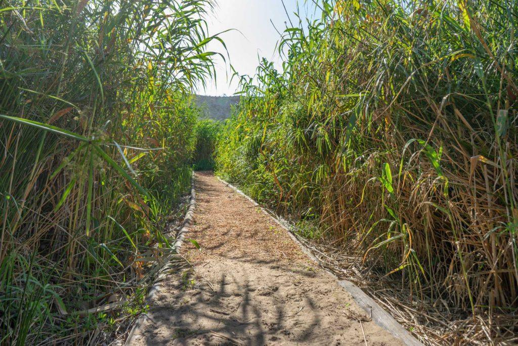 private river path